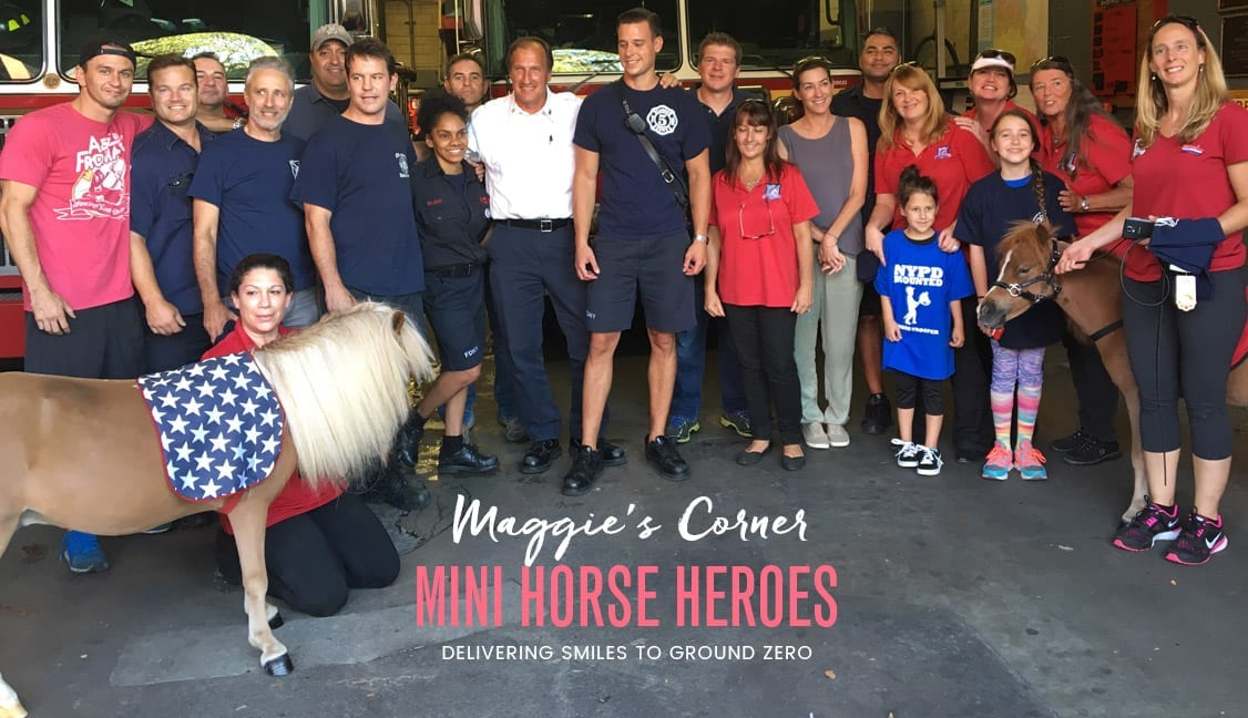 Mini Horse Heroes Featured Image: Mini Horses with First Responders