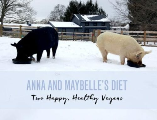 Anna and Maybelle's Diet: Two Happy, Healthy Vegans