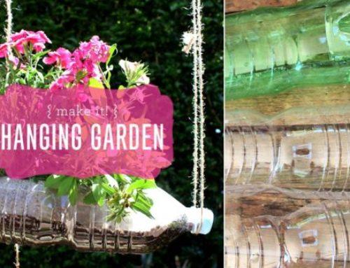 Make It! Hanging Garden