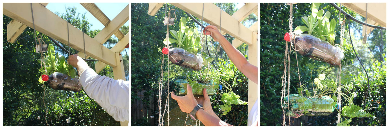 Hanging Garden Instructions Step 7