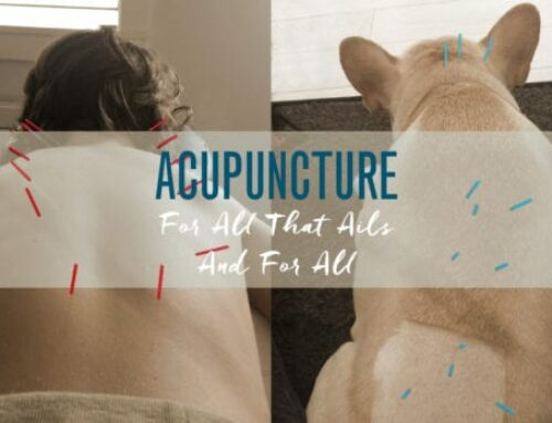 Acupuncture for All That Ails and for All