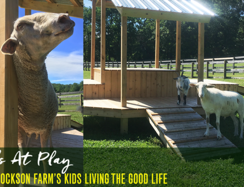Kids at Play: The Hey Friend Foundation Kids Living the Good Life