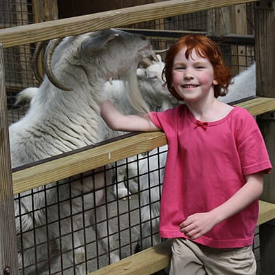 Child and Ram at the Animal Sanctuary