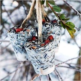 Winter Birdfeeder tied to Tree