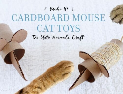 Make It! Cardboard Mouse Cat Toys