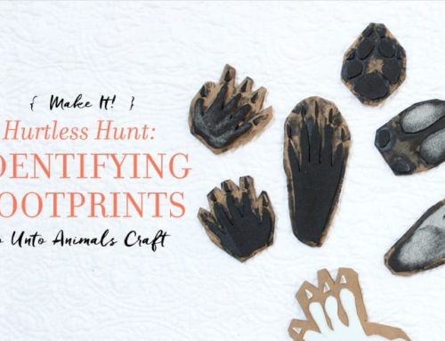 The Hurtless Hunt: Tracking Stamps Craft