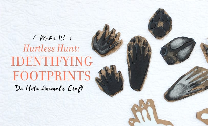 The Hurtless Hunt: Identifying Footprints Craft Featured Image