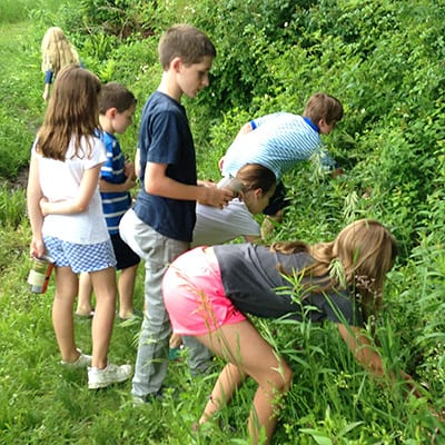 Children Activities at the Catherine Violet Hubbard Sanctuary