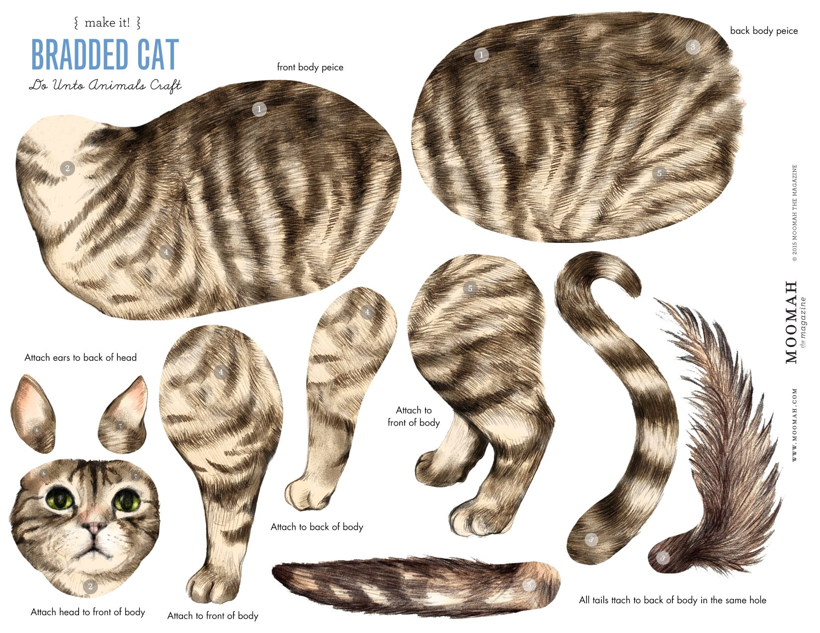 Hockhockson Bradded Cat Craft Template Downloadable