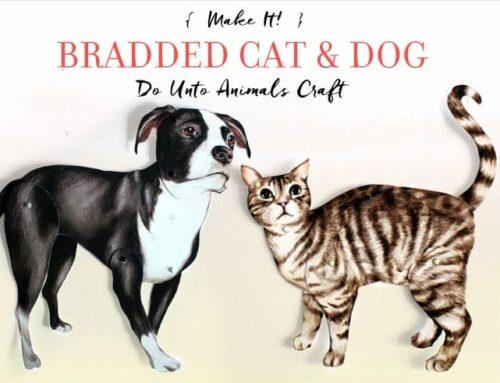 Make It! Bradded Cat & Dog