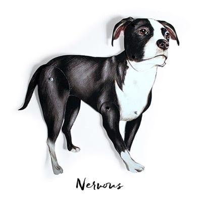 Bradded Dog Craft in Nervous Pose