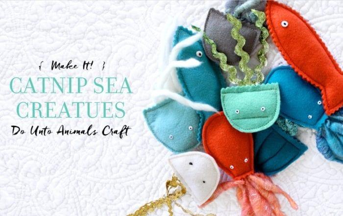 Catnip Sea Creatures Featured Image