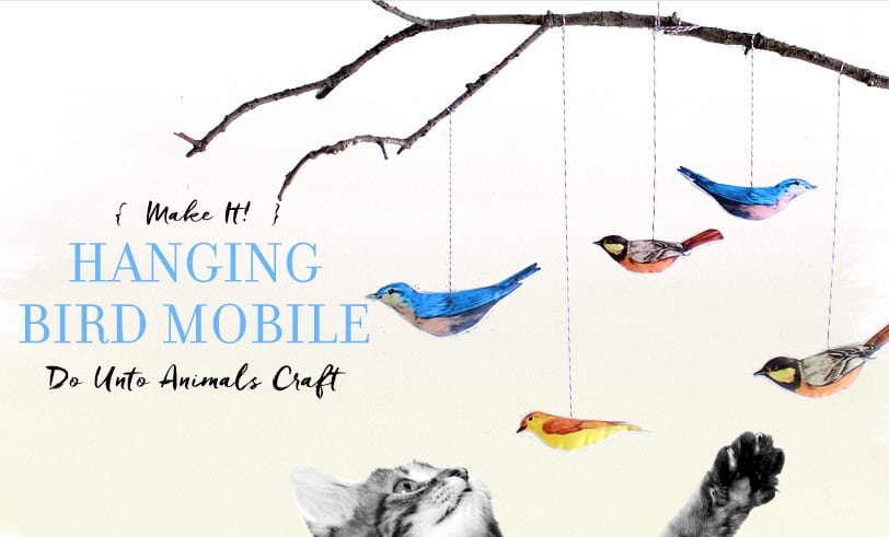 Bird Mobile Featured Image