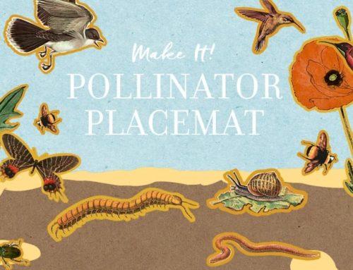 Make It! Pollinator Placemat