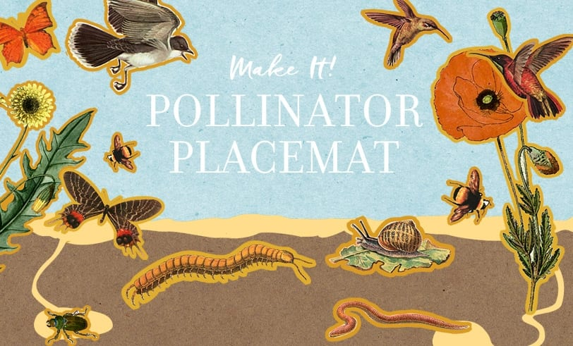 Make It! Pollinator Placemat Featured Image