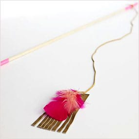 Cat swat stick with hanging feathers