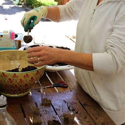 Filling plastic containers with potting soil and sand mix