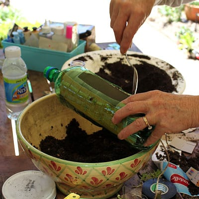 Filling the empty plastic bottle with potting soil and sand mix