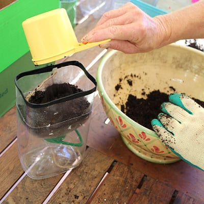 Filling the bottle top with potting mix