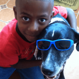 Chubbs the dog wearing sunglasses being hugged by a child