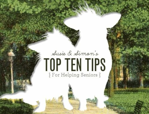 Susie and Simon's Top 10 Tips For Helping Seniors
