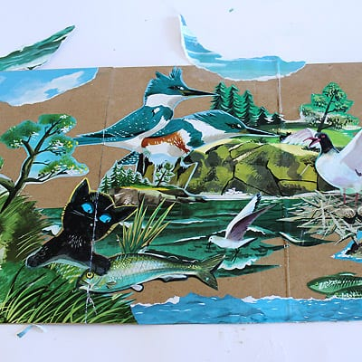 A view of The Little Island accordion book scene with cat, fish, birds, and other nature images.