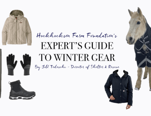 Expert Guide to Winter Gear